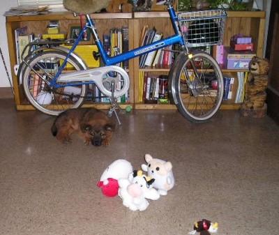 cody-and-the-bike.jpg