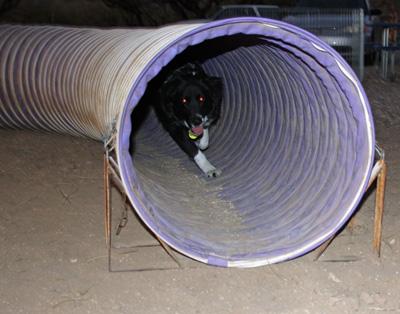 tunnel-schmick