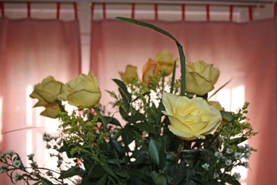 vday-roses