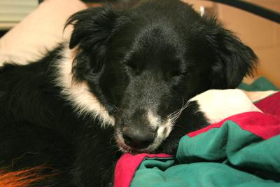 sleepypic